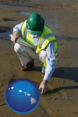 hawaii map icon and an environmental engineer wearing a green safety helmet