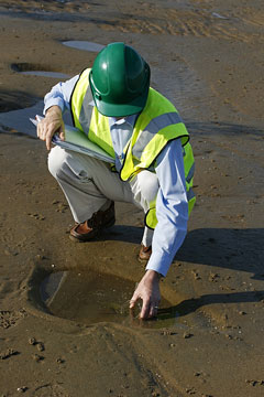 an environmental engineer wearing a green safety helmet
